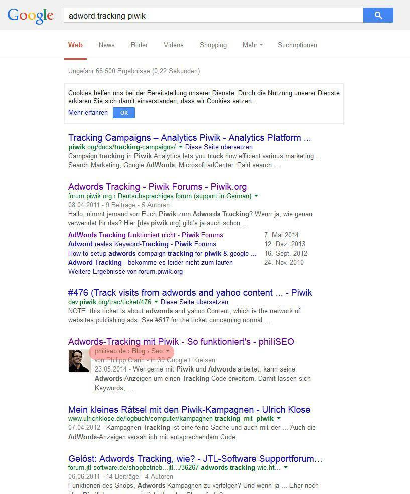 Nachher: Nach fünf Tagen war der Artikel unter der neuen Domain, aber an der gleichen Position zu finden.